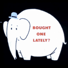 Have You Bought a White Elephant Lately?